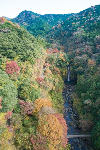 須津川渓谷の紅葉
