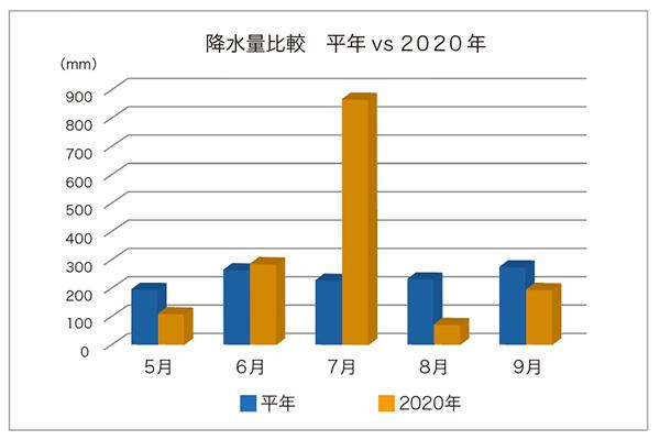 樹木医2020年降水量