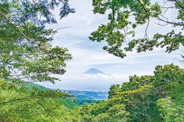 北斎赤富士観望地から見る富士山(6月下旬)